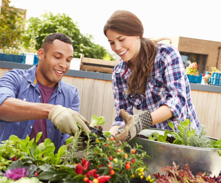 two people gardening